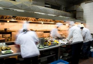 dining service consultants